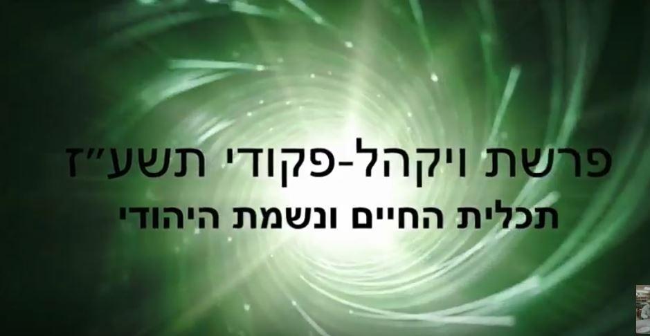 הרב יפתח סופר – פרשת ויקהל פיקודי (וידאו ומאמרים)